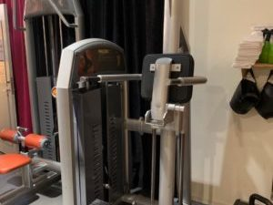 Chins-Dips-station Icarian Precor
