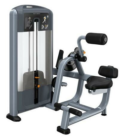Back Extension Discovery Precor
